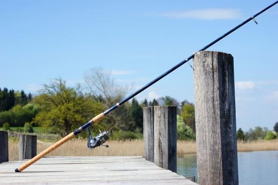 fishing-rod-326843_1280